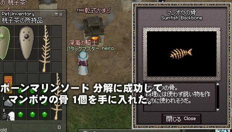 mabinogi_2010_03_20_012.jpg