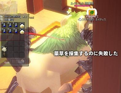mabinogi_2010_04_25_002.jpg