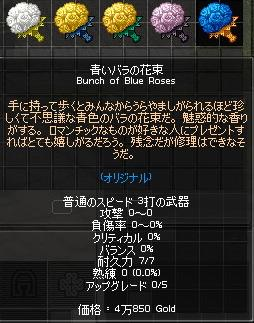 mabinogi_2010_06_09_001.jpg