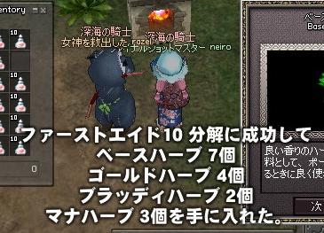 mabinogi_2010_09_03_009.jpg
