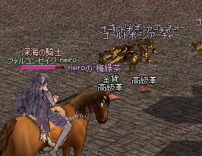 mabinogi_2010_09_28_010.jpg