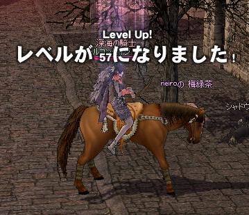 mabinogi_2010_10_05_015.jpg