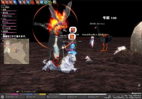 mabinogi_2010_10_09_011.jpg