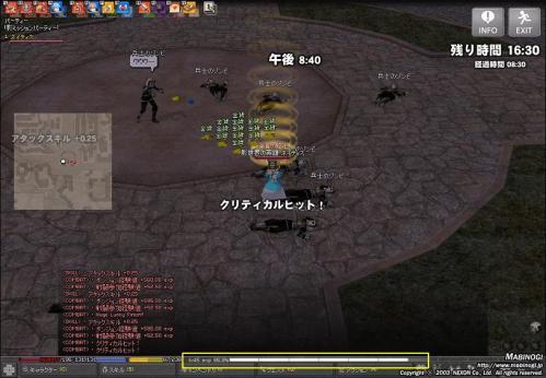 mabinogi_2010_10_14_009.jpg