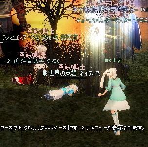 mabinogi_2010_10_15_016.jpg