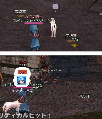 mabinogi_2010_10_16_031.jpg