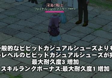 mabinogi_2010_10_18_015.jpg