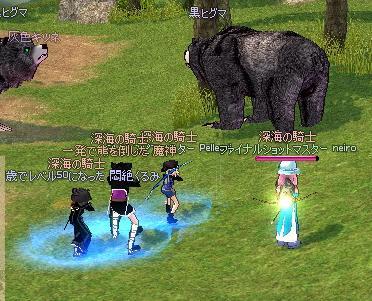 mabinogi_2010_10_24_031.jpg