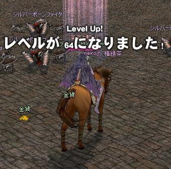 mabinogi_2010_10_24_036.jpg
