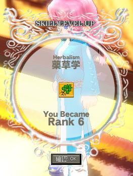 mabinogi_2010_10_25_009.jpg