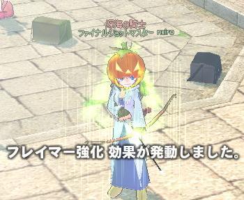 mabinogi_2010_11_01_007.jpg