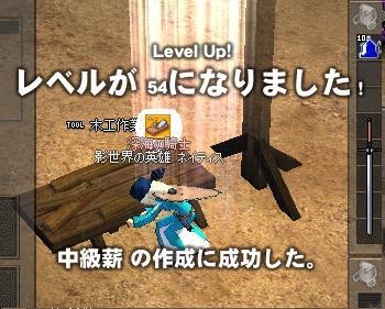 mabinogi_2010_11_08_017.jpg