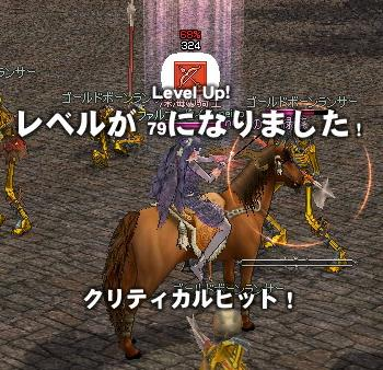 mabinogi_2010_11_08_045.jpg