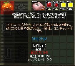 mabinogi_2010_11_10_008.jpg