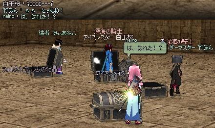 mabinogi_2010_12_22_031.jpg