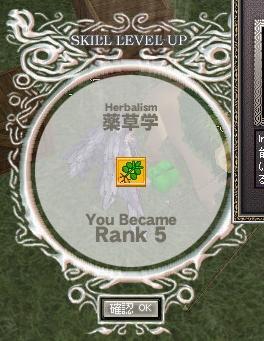 mabinogi_2010_12_31_020.jpg