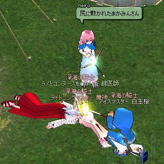 mabinogi_2011_01_11_028.jpg