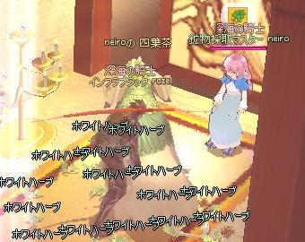 mabinogi_2011_01_30_001.jpg