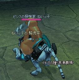 mabinogi_2011_02_28_011.jpg