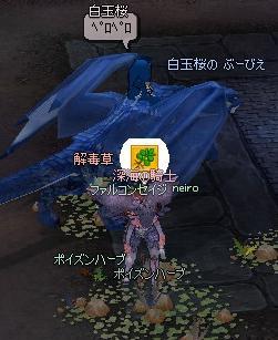 mabinogi_2011_03_27_012.jpg
