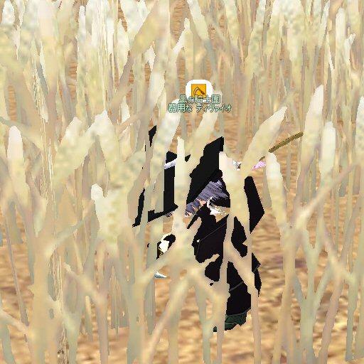 mabinogi_2009_06_23_001.jpg