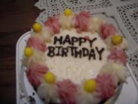 ハリーの誕生日