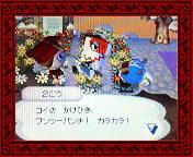 NEC_0002_20080124201246.jpg