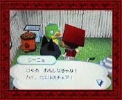 NEC_0002_20080202160000.jpg