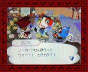 NEC_0003_20080124201238.jpg