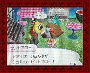 NEC_0003_20080528194840.jpg