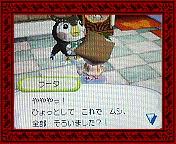 NEC_0003_20080607200807.jpg