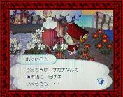 NEC_0006_20080120193025.jpg