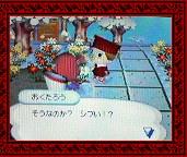 NEC_0006_20080126193039.jpg