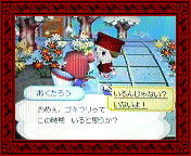NEC_0007_20080126193028.jpg