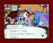 NEC_0009_20080124201028.jpg