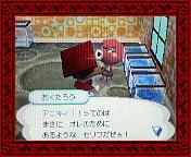 NEC_0012_20080323145226.jpg