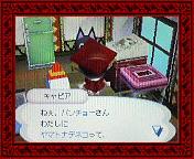 NEC_0014_20080323145208.jpg
