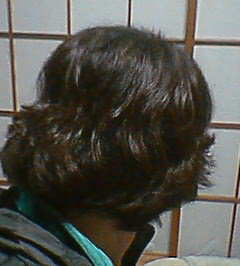 20060203024804