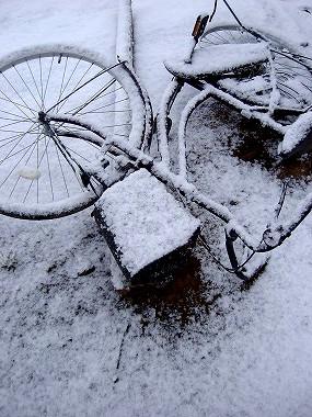 自転車にも雪