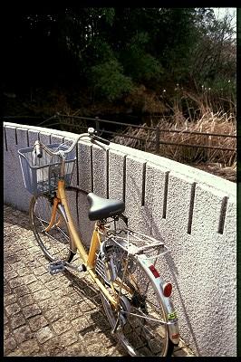 ご多分に洩れず自転車率高し