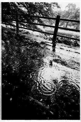 雨の日はモノクロで