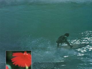 surfmag198320003.jpg
