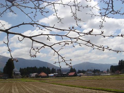 春0610