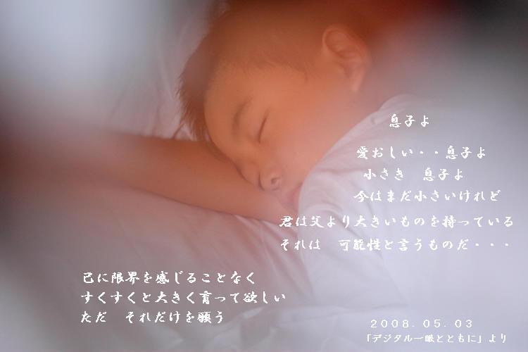 1U1V6174.jpg