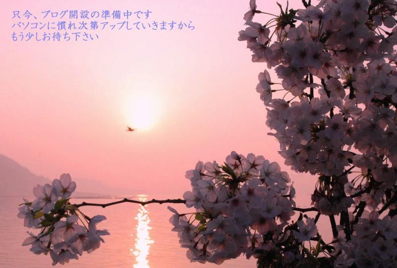 コピー ~ 粟島散歩 008