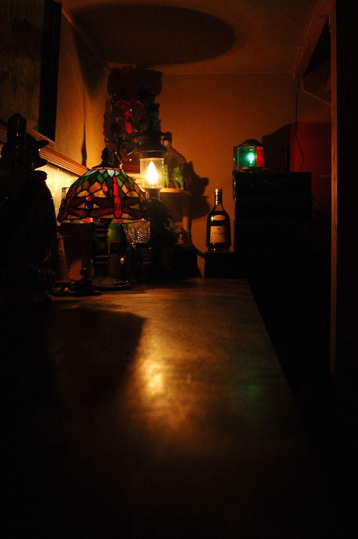 夜桜を撮る 028