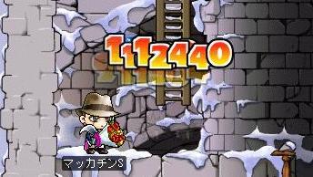 Maple6687a.jpg