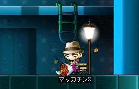 Maple6693a.jpg