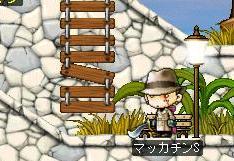 Maple6757a.jpg