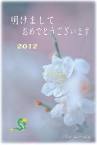 20122mm.jpg